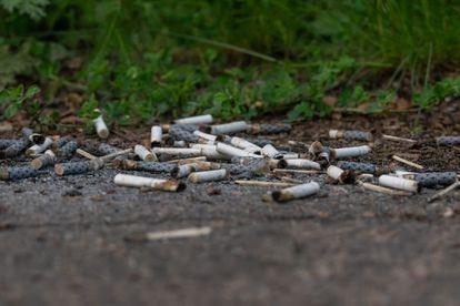 Chaque morceau de cigarette contient jusqu'à 400 contaminants, y compris des métaux lourds tels que le cadmium ou l'arsenic avec le potentiel de contaminer jusqu'à 50 litres d'eau douce ou 10 litres de saumure.