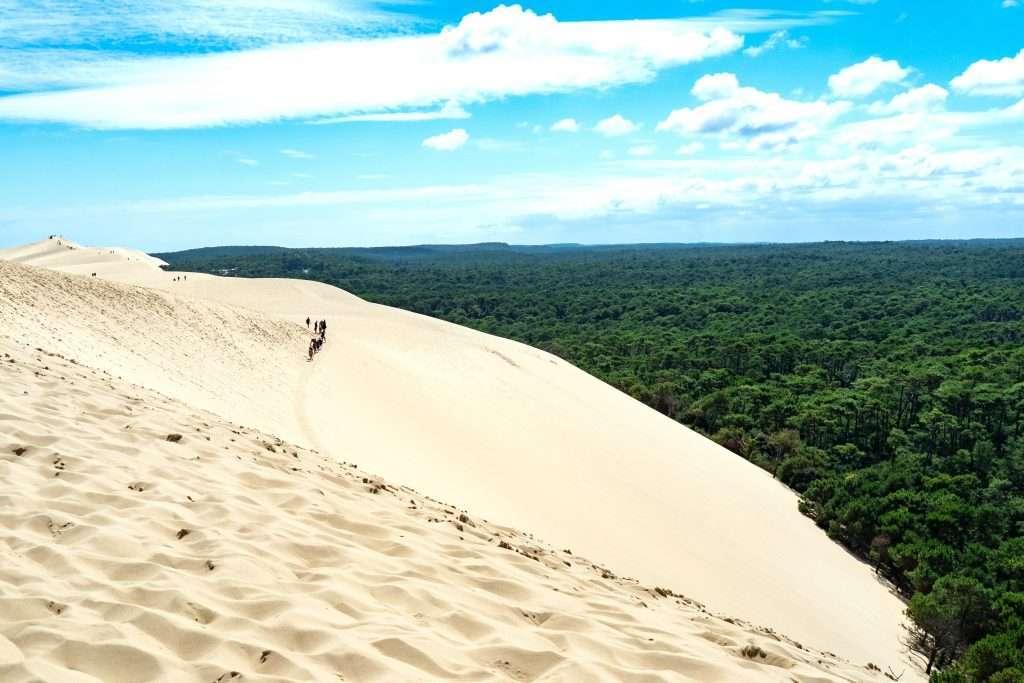 La dune du Pila pour cet été