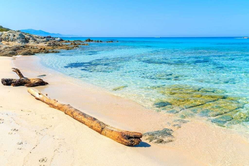 L'une des plus belles plage de France, celle de Saleccia en Corse