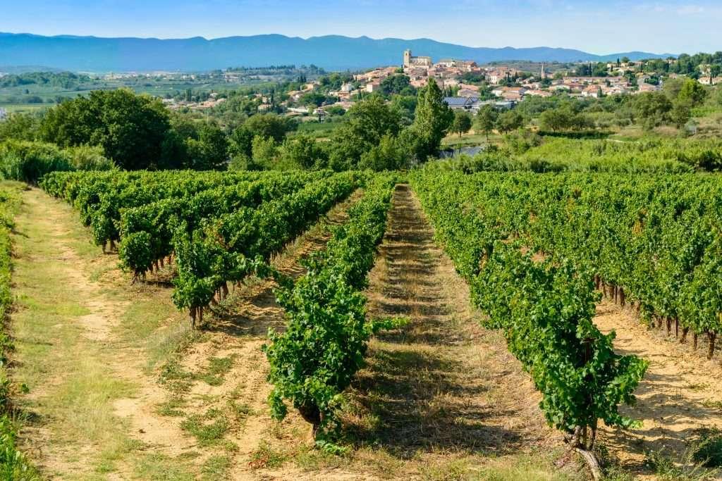 Languedoc Roussillon.