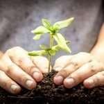 Ouverture d'une école itinérante d'agro-écologie dans le Morbihan